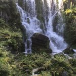 Waterfall in bergpark