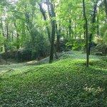 Park na Kamiennej Gorze