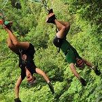 Spiderman Zipline--Outdoor Adventure