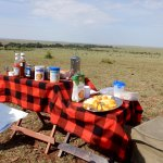 Breakfast out on the plains