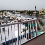 A view of the marina from our balcony. South Florida Diving Headquarters dive boats dock there.