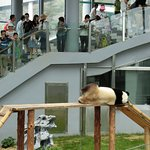 Photo of Dalian Forest Zoo