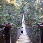 Photo of Lynn Canyon Park
