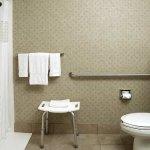 Hampton Inn & Suites Valparaiso Accesible Bathroom