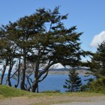 Fort Casey State Park Foto