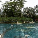 Duangjitt Resort & Spa resmi