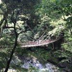 祖谷のかずら橋の写真