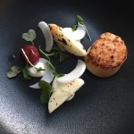 Grilled scallop and turnip with elderflower