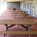 picnic tables and BBQ