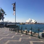 Circular Quay and surrounding water and areas!