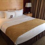 Photo de Comfort Suites Michigan Avenue / Loop