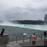 Horseshoe falls from Terrapin Point