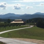The drive up to Afton Mountain Vineyards.