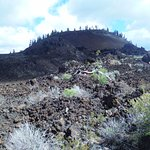Lava butte seen from the lava fields