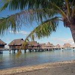 Sofitel Bora Bora Private Island Foto