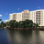 Foto de Hilton Saint Petersburg Carillon Park