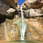 Lower Calf Creek Falls' Destination