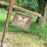 Butterfly Hollow - A Hidden Retreat Foto