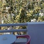 Afroditi Venus Beach Hotel & Spa resmi