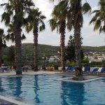Foto Hotel Blue Fountain
