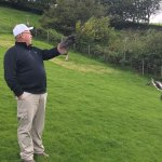 Foto de Falconry Experience Wales