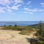 Photo of Oli's Trolley - Acadia National Park Tour