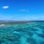 The Great Barrier Reef with Blue Dive