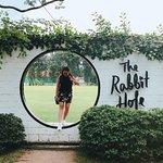 Bild från The White Rabbit