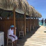 Photo de Marinarium Excursions - Reef Explorer