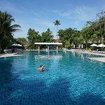 Lagoon Pool.
