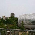Photo of Myriad Botanical Gardens