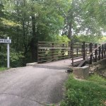 Davis Bridge over not so troubled waters in Tawawa park