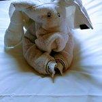 Moonfleet Manor Hotel Foto