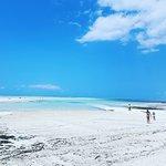 Photo of Dream of Zanzibar