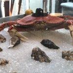 Photo de Salito's Crab House & Prime Rib