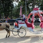 Horse carriage riding