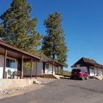 Bryce Canyon Pines Foto