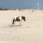 Foto di Ocean City Beach