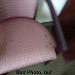 Photo de Country Inn & Suites By Carlson, Hampton