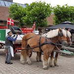Free Carlsberg tour with horse-drawn carriage