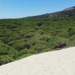 Photo de Playa de Bolonia