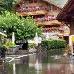 Photo de Hotel-Restaurant Alpenblick