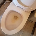 stained toilet bowl