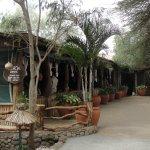 Kibo Safari Camp照片