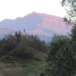 Photo of Marmite Lontan