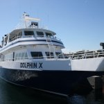Our boat, the Dolphin X