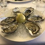 Oyster to start