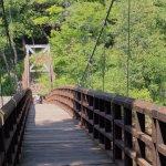 This bridge does rock