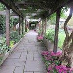 Beautiful Botanical Garden for public