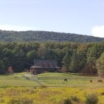Photo de Mountain Horse Farm B&B and Wellness Retreat